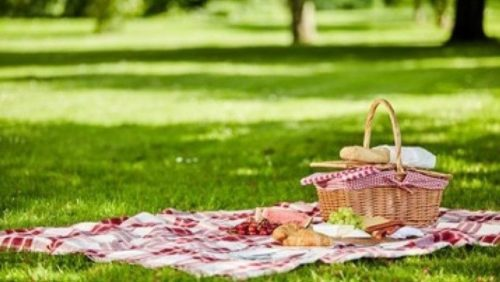 Picnic in the Park!!